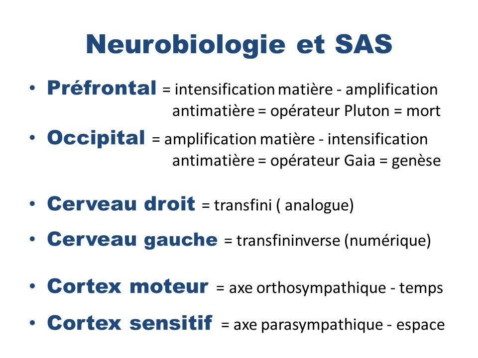 Neurobiologie et SAS Cortex moteur = axe orthosympathique - temps