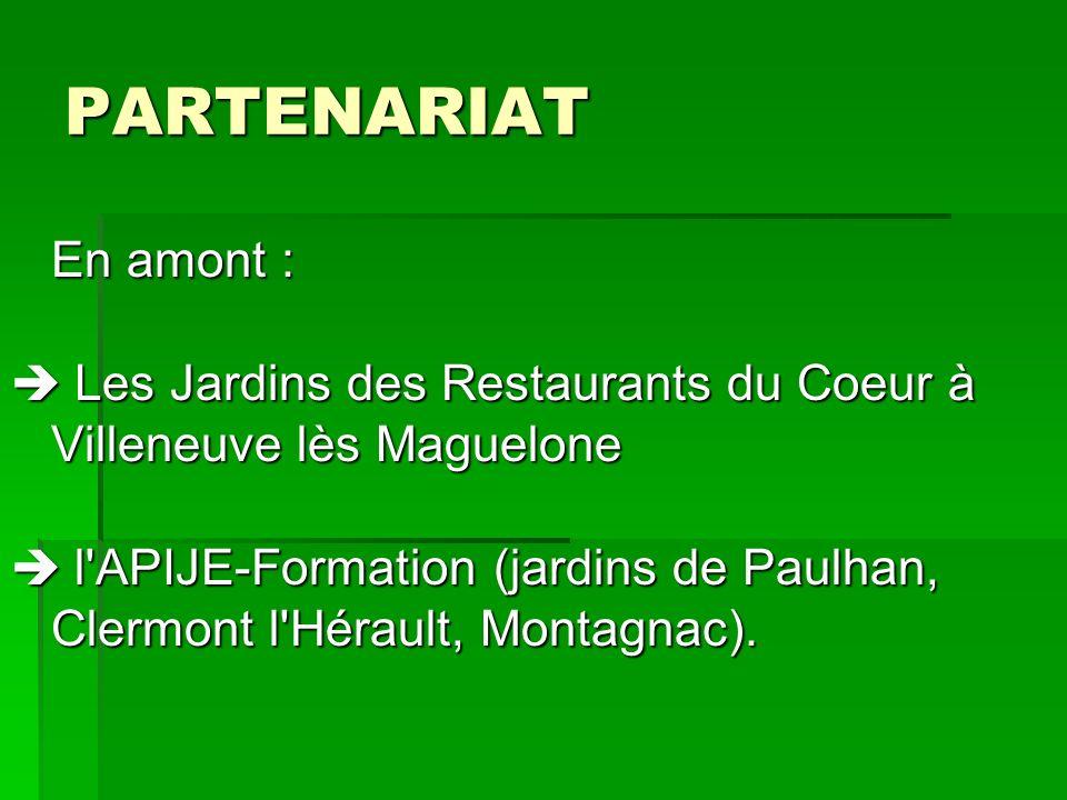 PARTENARIAT En amont :  Les Jardins des Restaurants du Coeur à Villeneuve lès Maguelone.