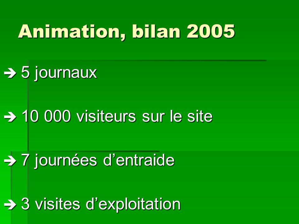 Animation, bilan 2005  5 journaux  10 000 visiteurs sur le site