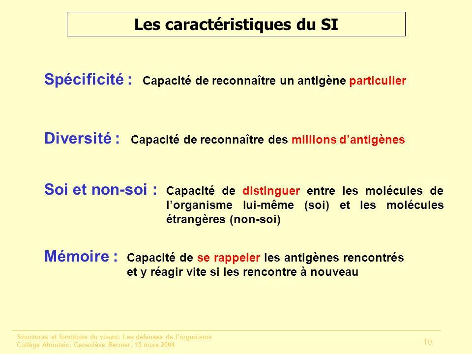 Les caractéristiques du SI