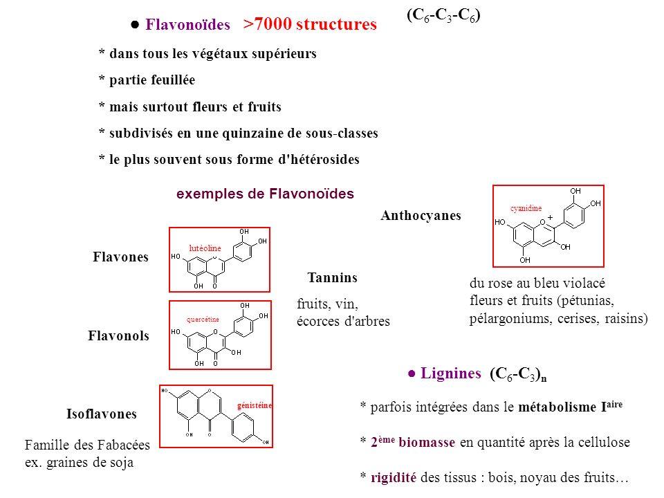 ● Flavonoïdes >7000 structures