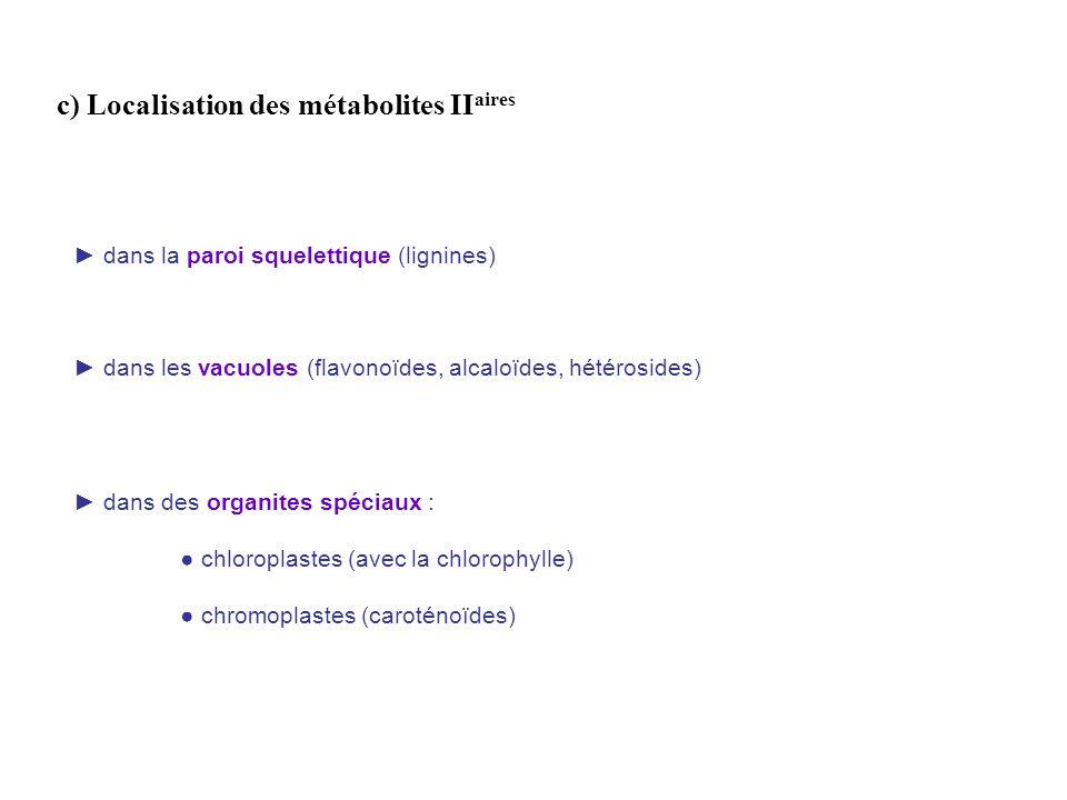 c) Localisation des métabolites IIaires