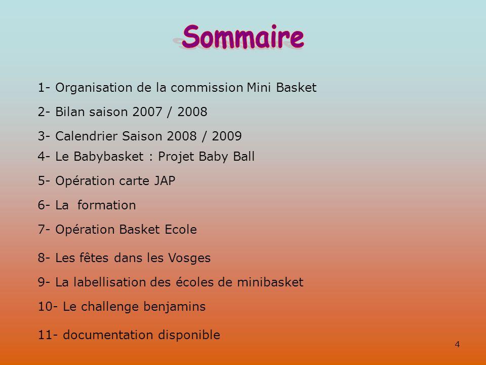 Sommaire 1- Organisation de la commission Mini Basket