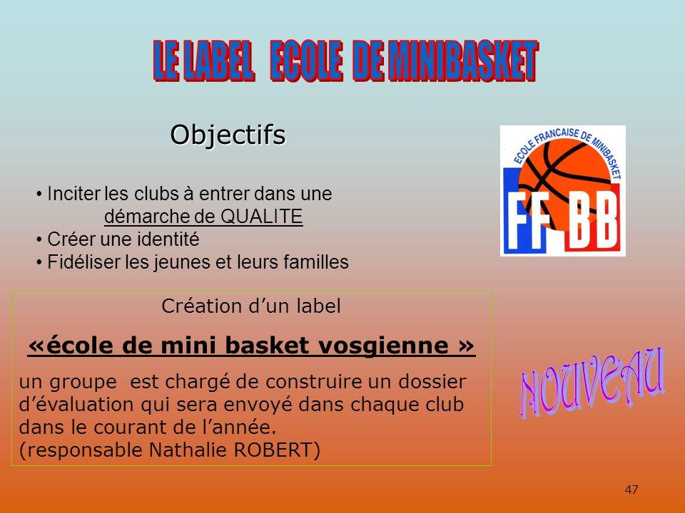«école de mini basket vosgienne »