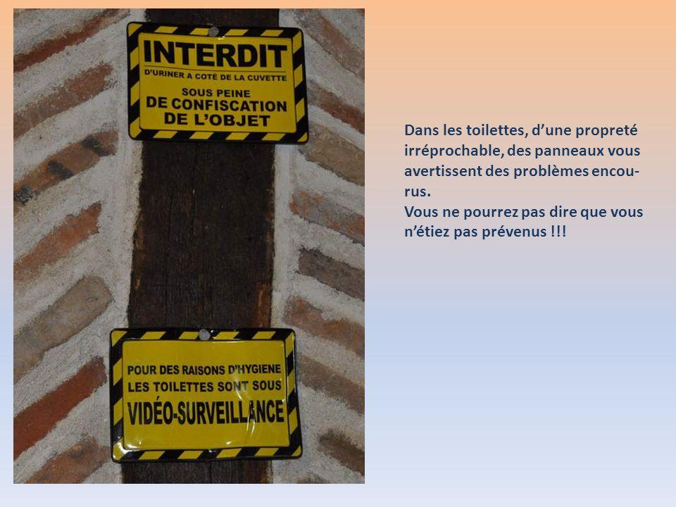 Dans les toilettes, d'une propreté irréprochable, des panneaux vous avertissent des problèmes encou-rus.