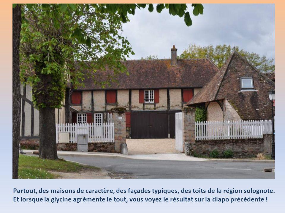 Partout, des maisons de caractère, des façades typiques, des toits de la région solognote.