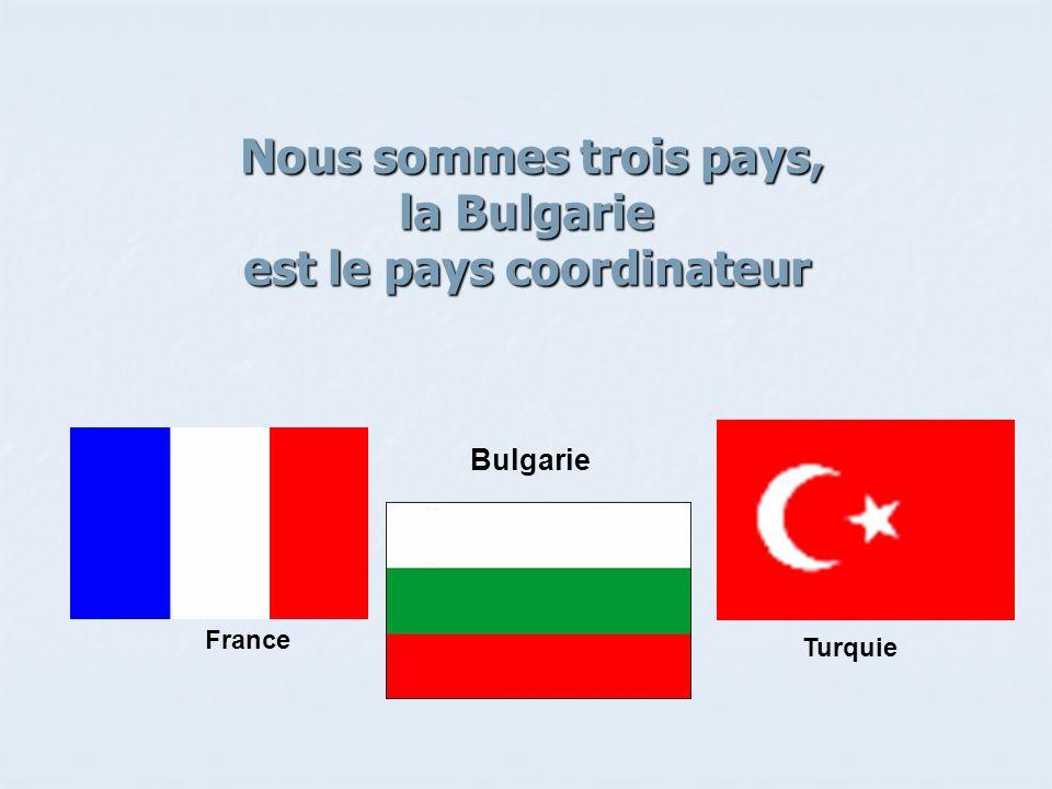 Nous sommes trois pays, la Bulgarie est le pays coordinateur