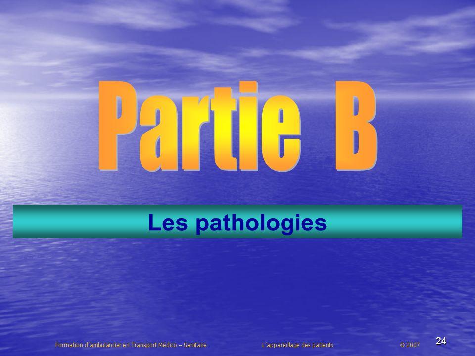 Partie B Les pathologies