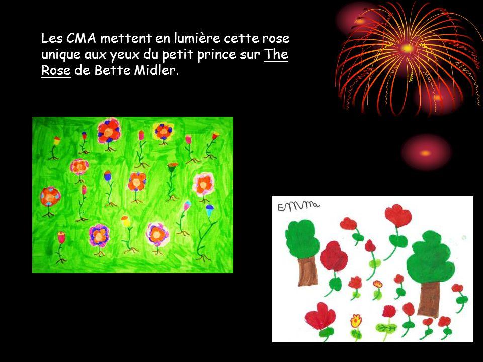Les CMA mettent en lumière cette rose unique aux yeux du petit prince sur The Rose de Bette Midler.
