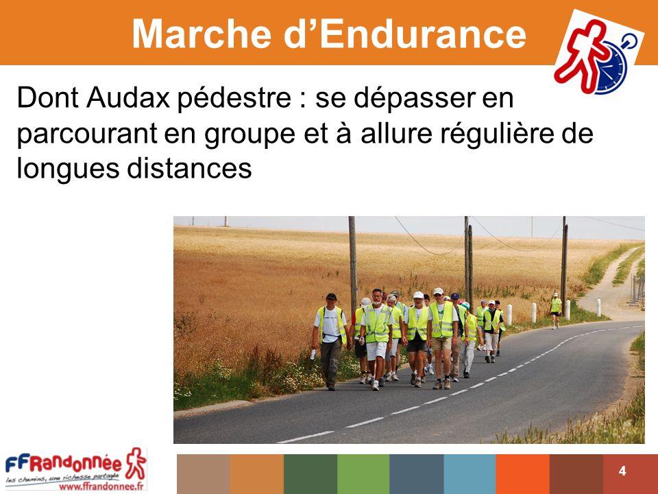 Marche d'Endurance Dont Audax pédestre : se dépasser en parcourant en groupe et à allure régulière de longues distances.