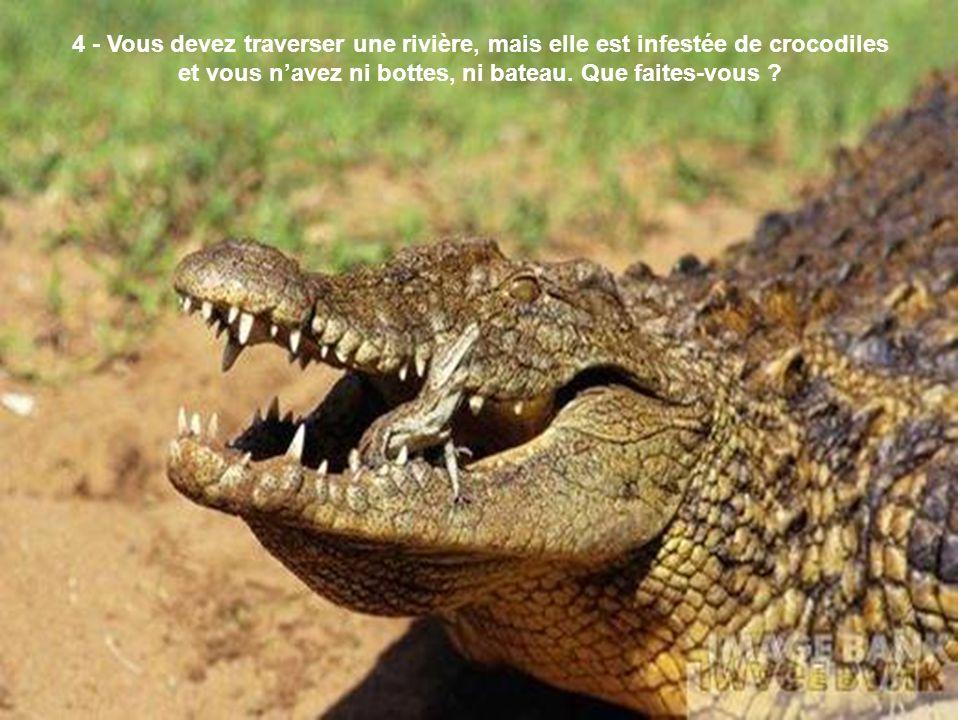 4 - Vous devez traverser une rivière, mais elle est infestée de crocodiles et vous n'avez ni bottes, ni bateau.