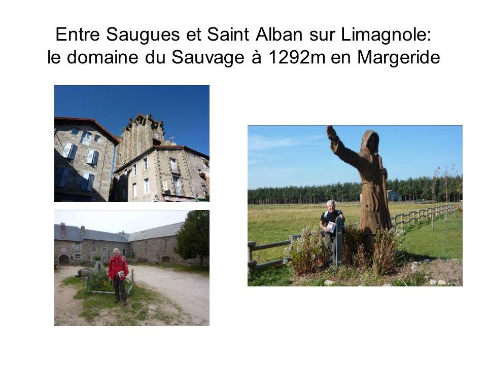 Entre Saugues et Saint Alban sur Limagnole: le domaine du Sauvage à 1292m en Margeride