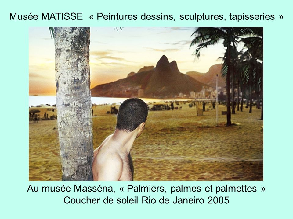 Musée MATISSE « Peintures dessins, sculptures, tapisseries »