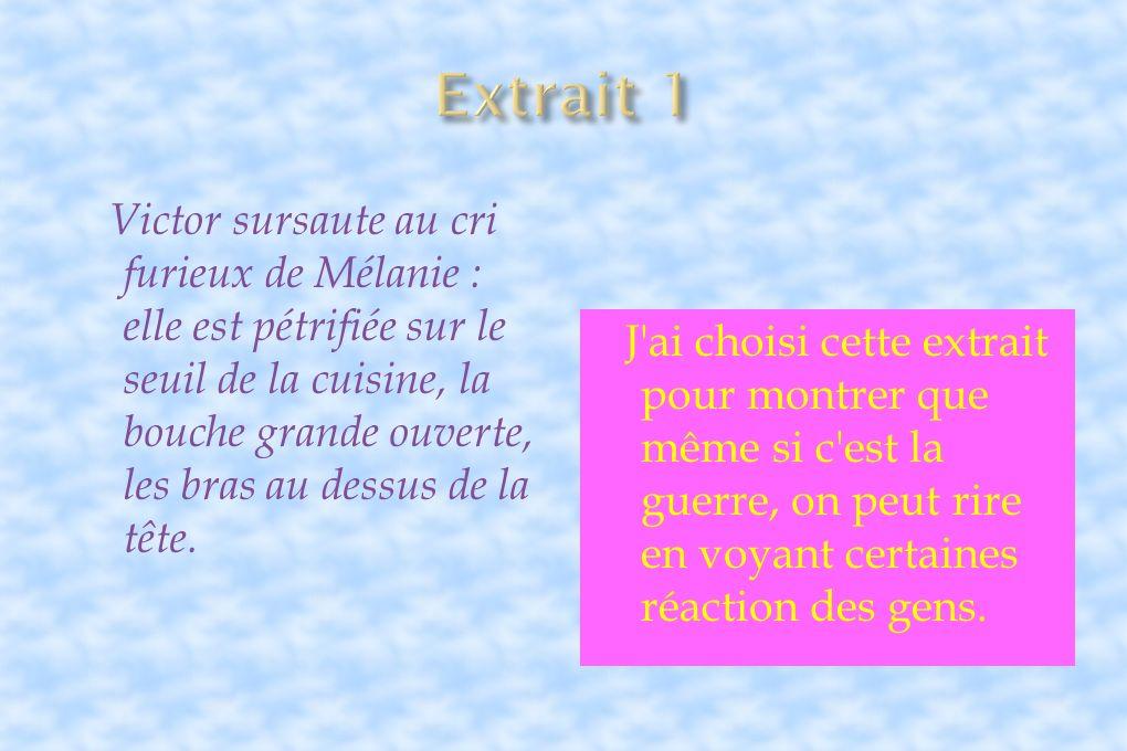 Extrait 1