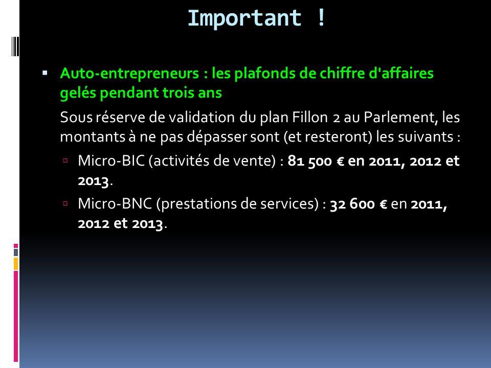 Important ! Auto-entrepreneurs : les plafonds de chiffre d affaires gelés pendant trois ans.