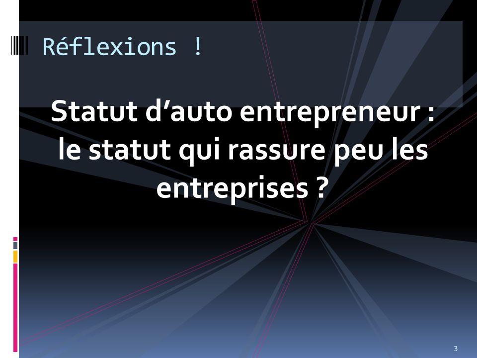 Réflexions ! Statut d'auto entrepreneur : le statut qui rassure peu les entreprises