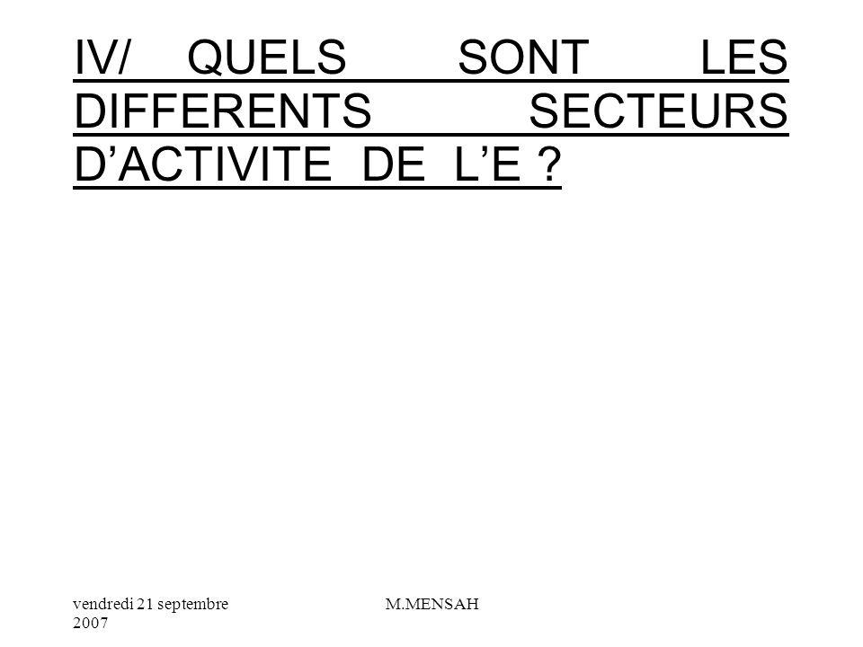 IV/ QUELS SONT LES DIFFERENTS SECTEURS D'ACTIVITE DE L'E