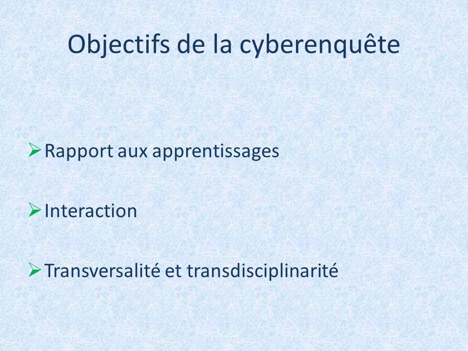 Objectifs de la cyberenquête