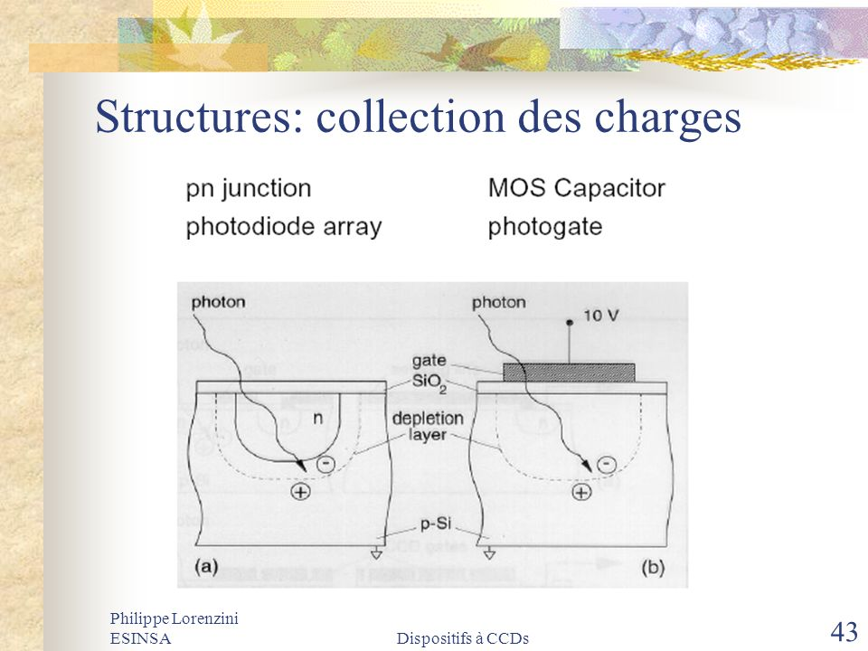 Structures: collection des charges