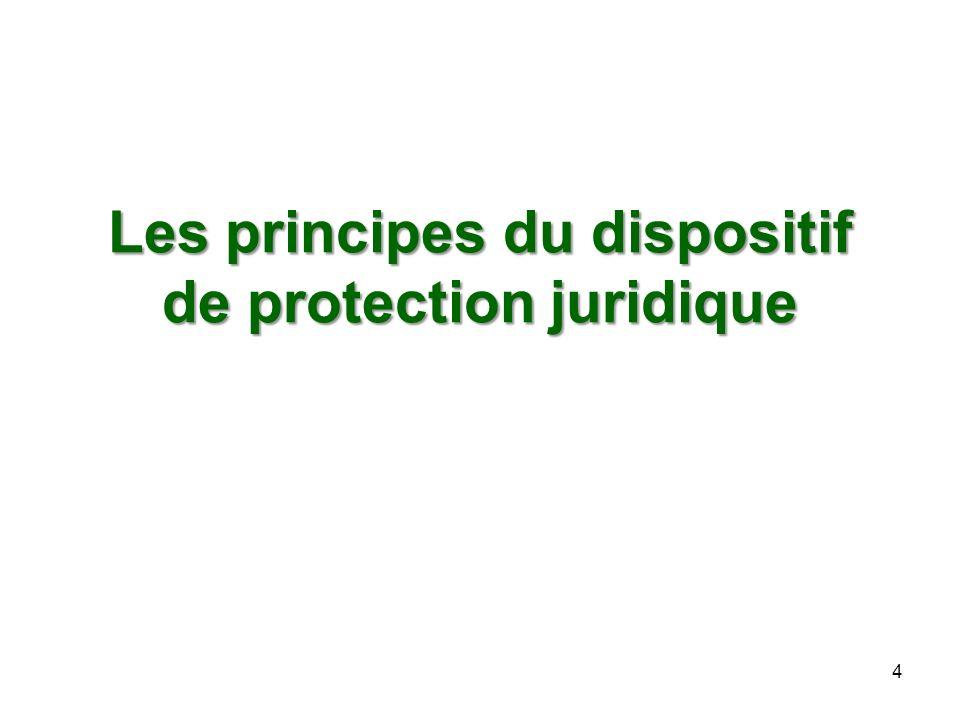 Les principes du dispositif de protection juridique