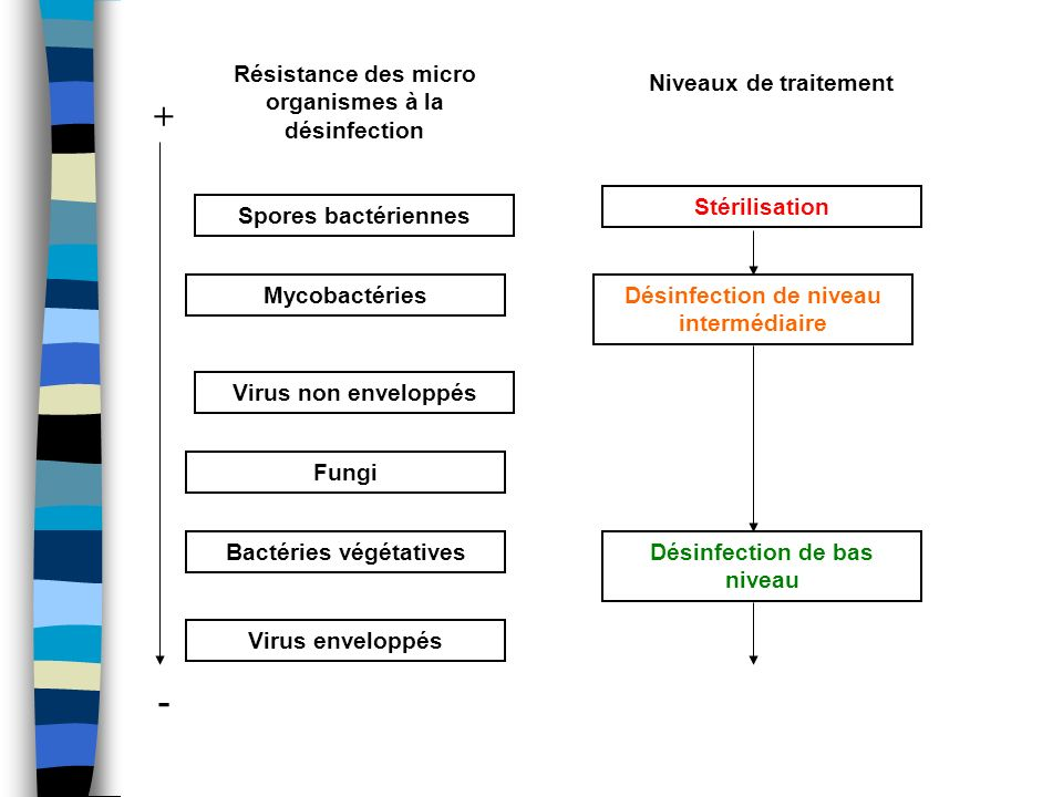 + - Résistance des micro organismes à la désinfection