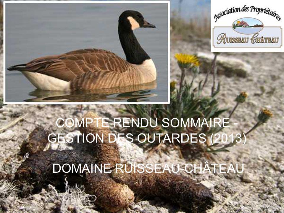 COMPTE RENDU SOMMAIRE - GESTION DES OUTARDES (2013)