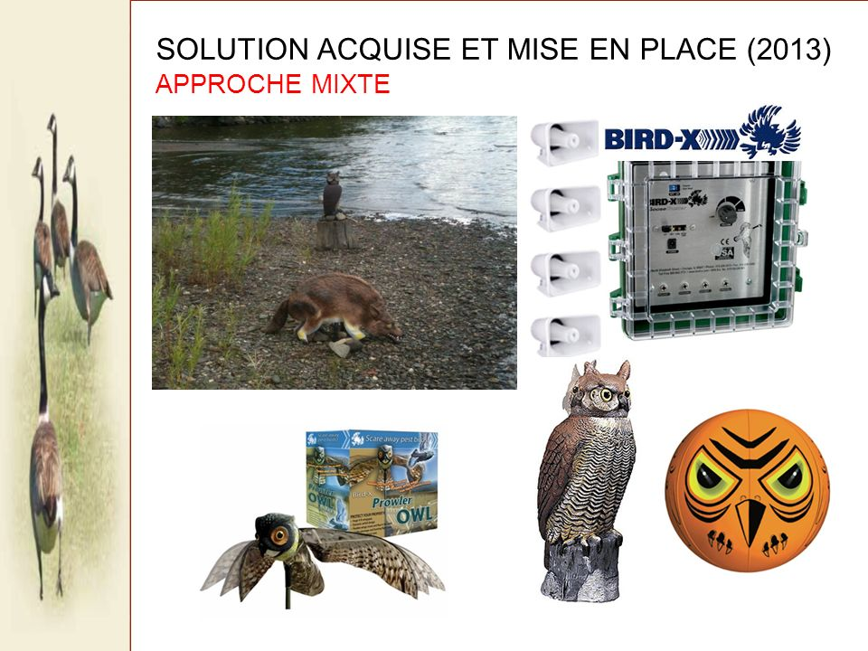 SOLUTION ACQUISE ET MISE EN PLACE (2013) APPROCHE MIXTE