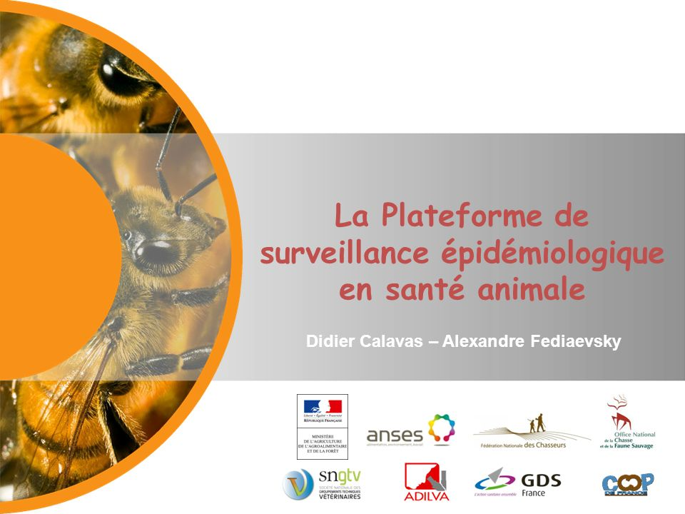 La Plateforme de surveillance épidémiologique en santé animale