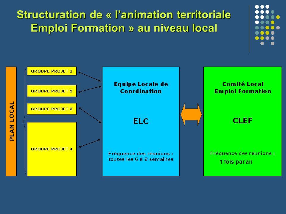Structuration de « l'animation territoriale Emploi Formation » au niveau local