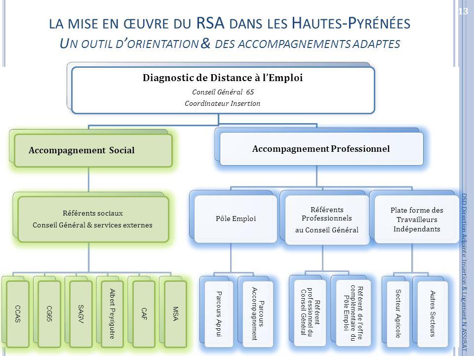 la mise en œuvre du RSA dans les Hautes-Pyrénées Un outil d'orientation & des accompagnements adaptes