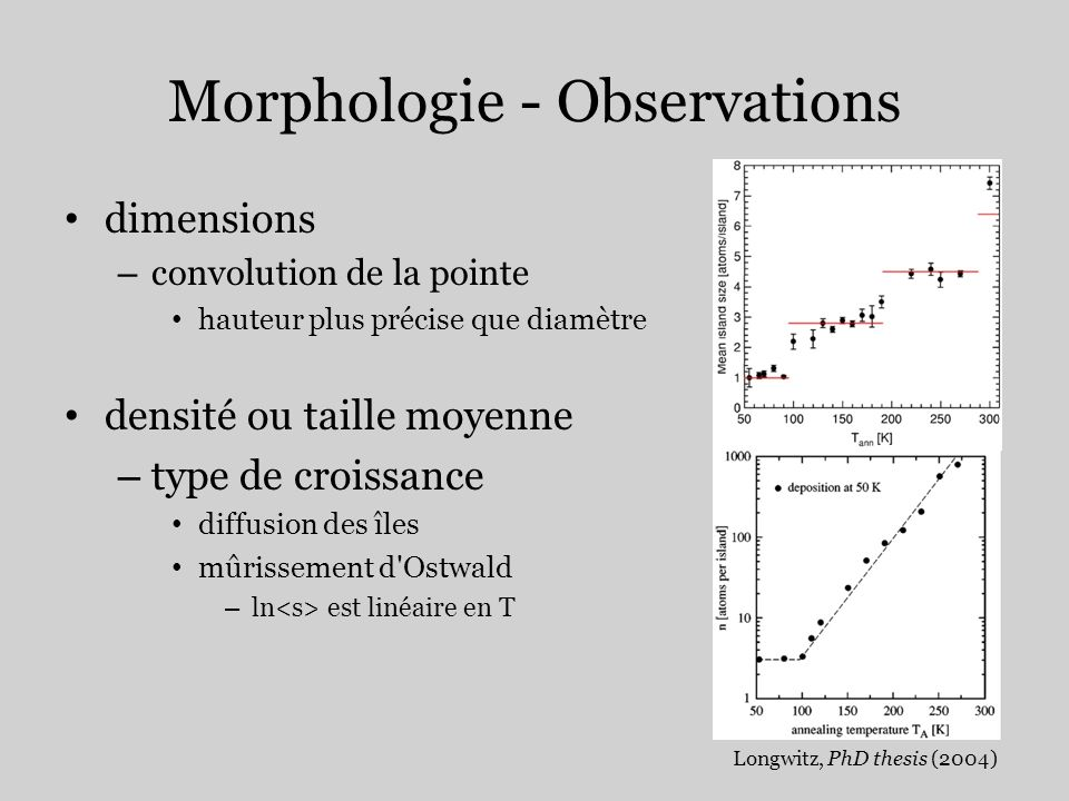 Morphologie - Observations