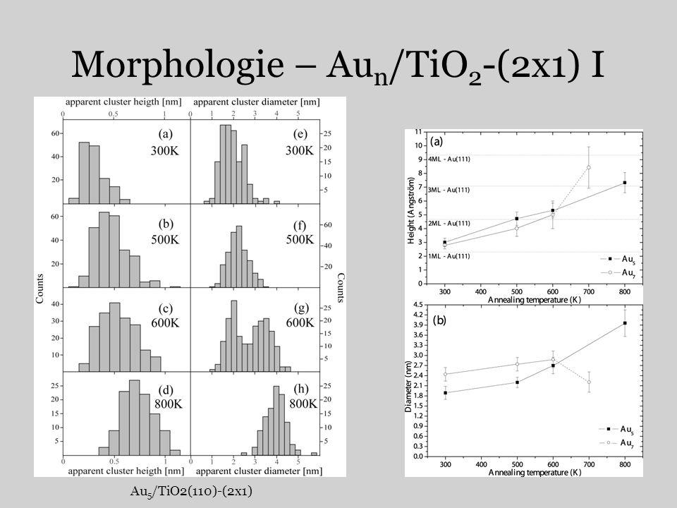 Morphologie – Aun/TiO2-(2x1) I