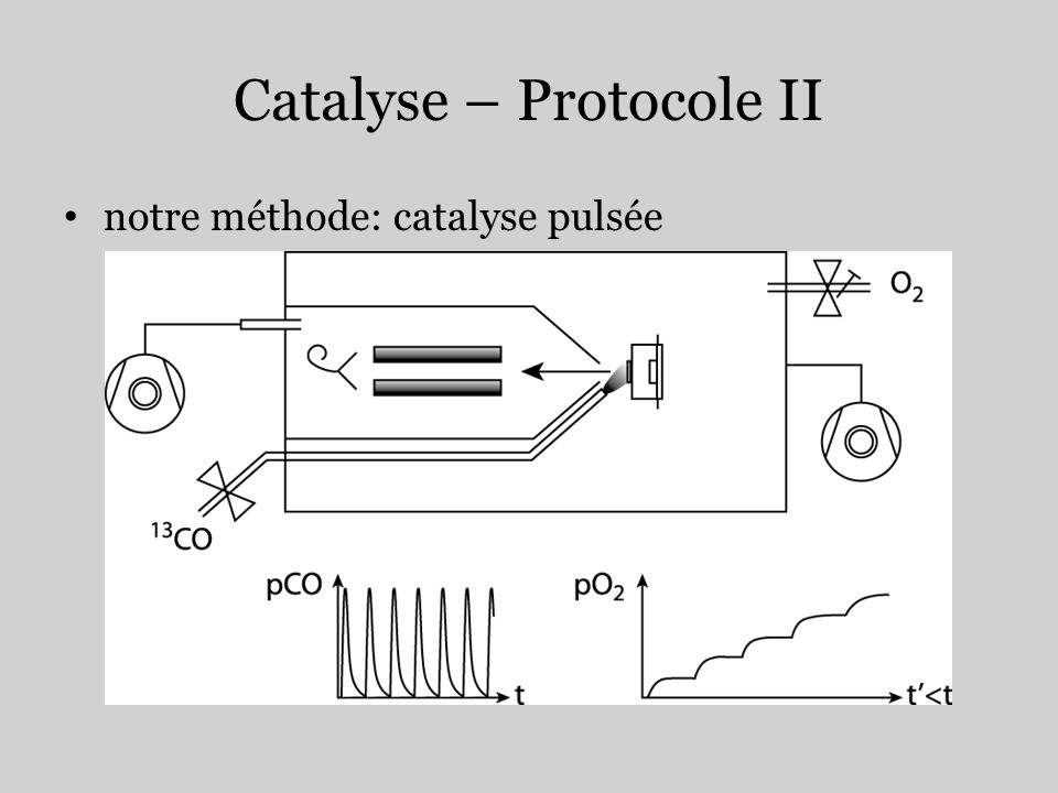 Catalyse – Protocole II
