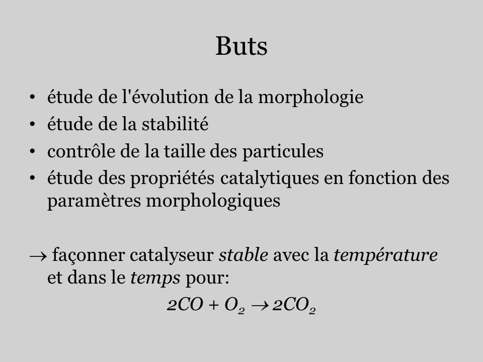 Buts étude de l évolution de la morphologie étude de la stabilité