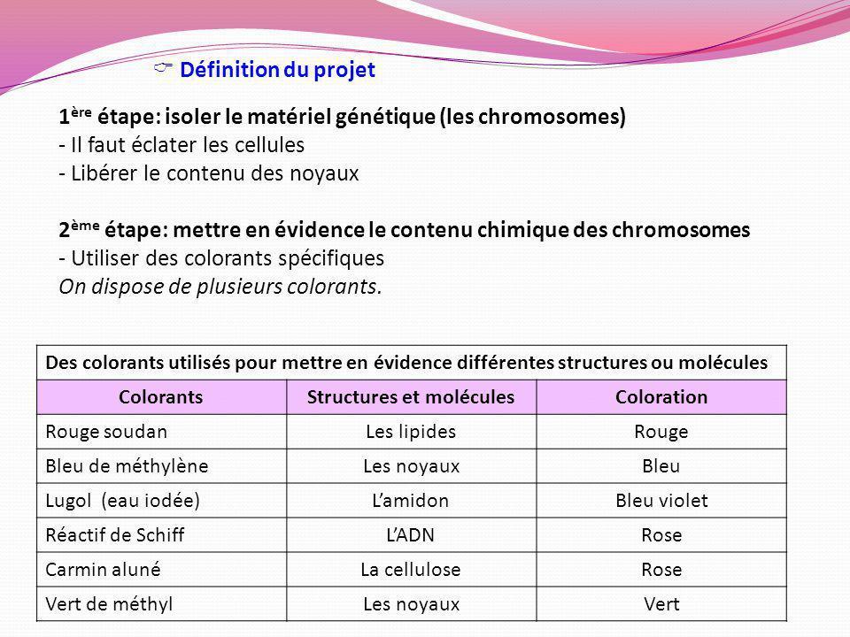 Structures et molécules