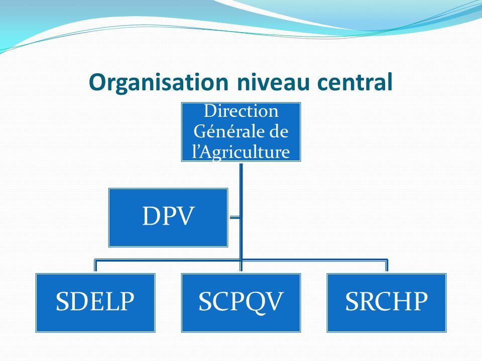 Organisation niveau central