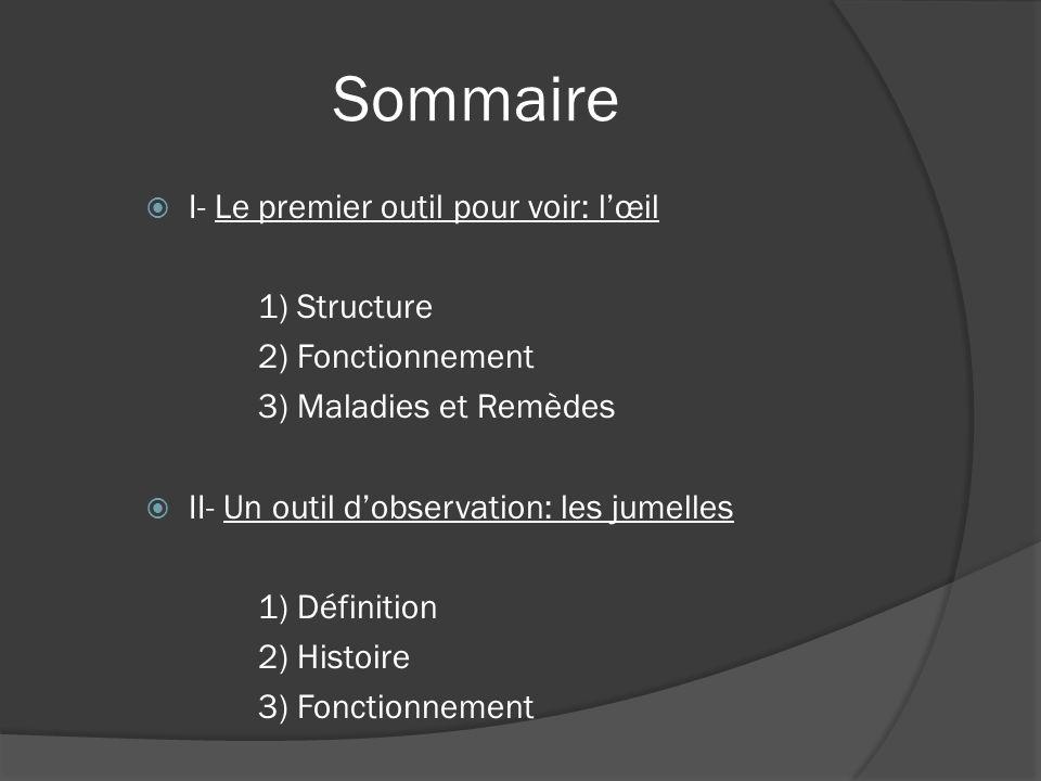 Sommaire I- Le premier outil pour voir: l'œil 1) Structure