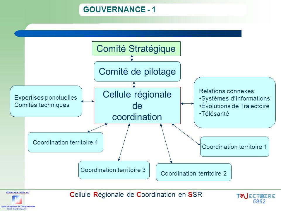 Comité Stratégique Comité de pilotage Cellule régionale de