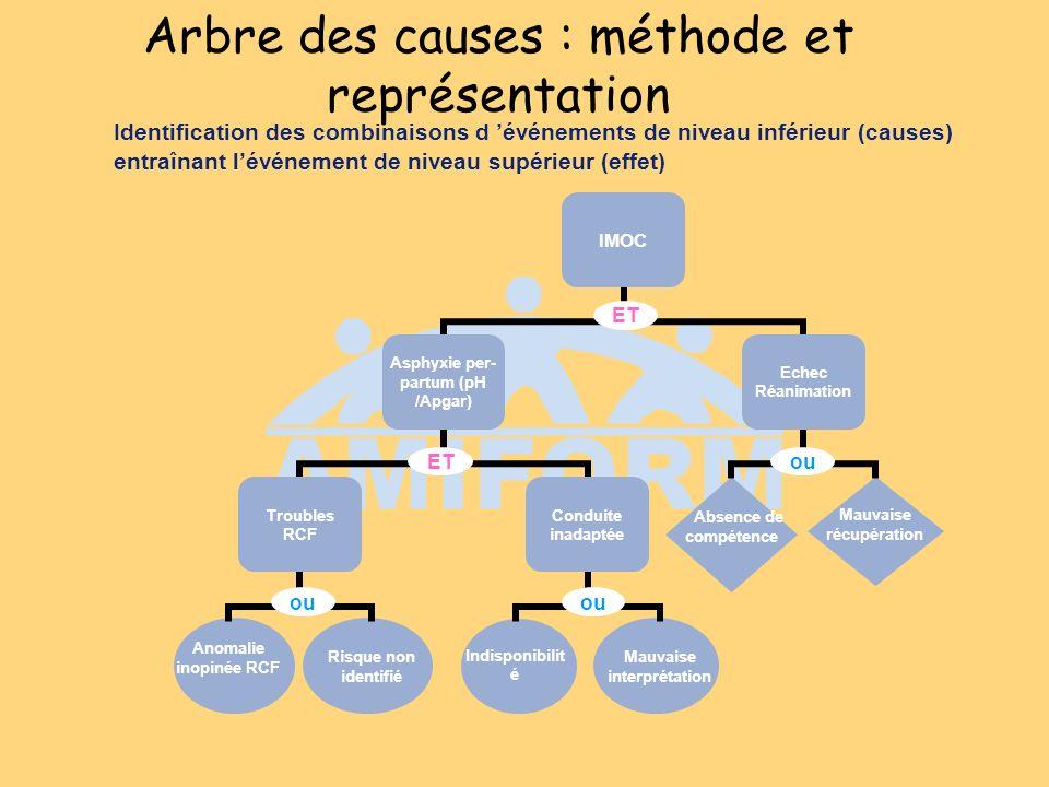 Arbre des causes : méthode et représentation