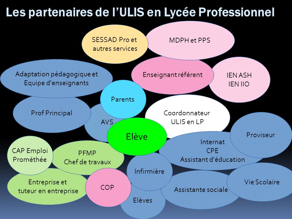 Les partenaires de l'ULIS en Lycée Professionnel