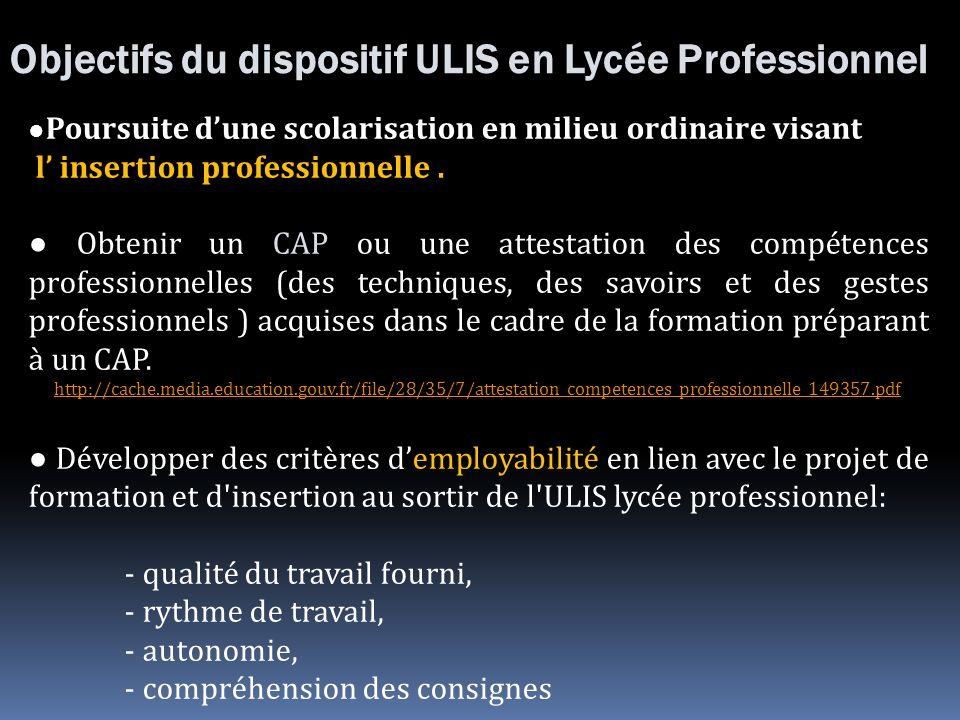Objectifs du dispositif ULIS en Lycée Professionnel