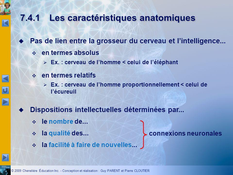 7.4.1 Les caractéristiques anatomiques