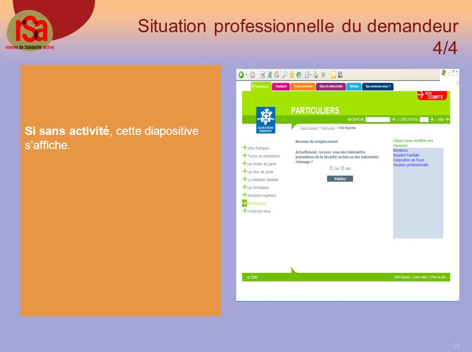 Situation professionnelle du demandeur 4/4