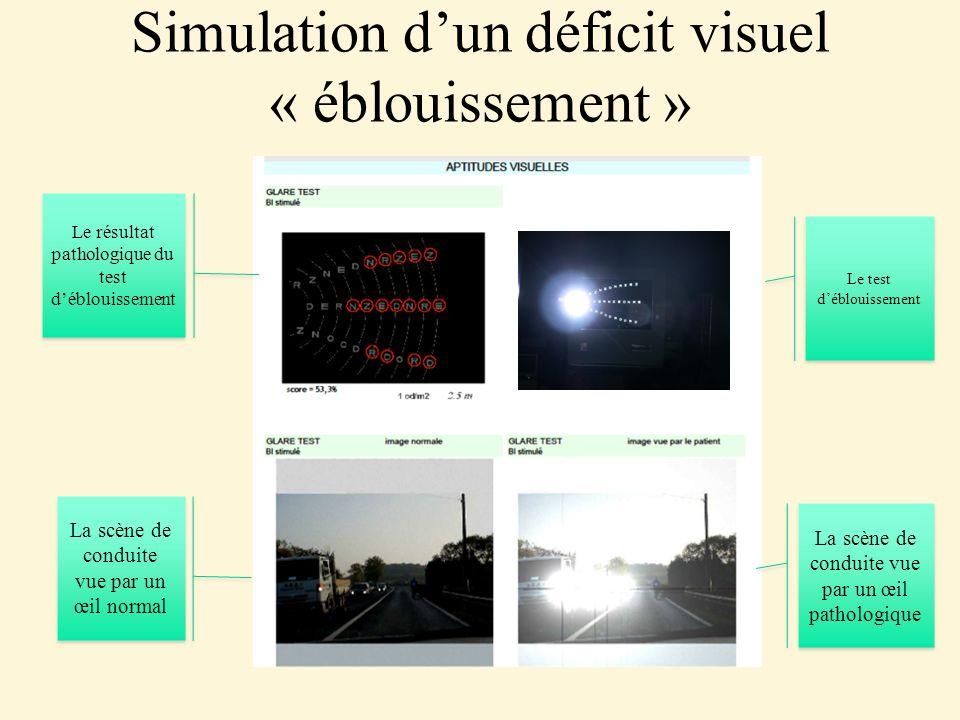 Simulation d'un déficit visuel « éblouissement »