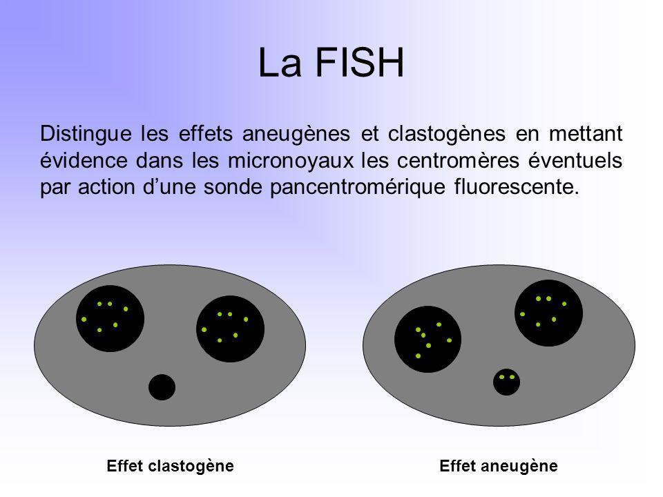La FISH