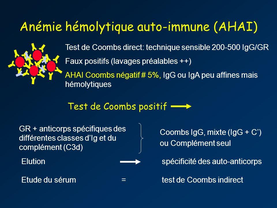 Anémie hémolytique auto-immune (AHAI)