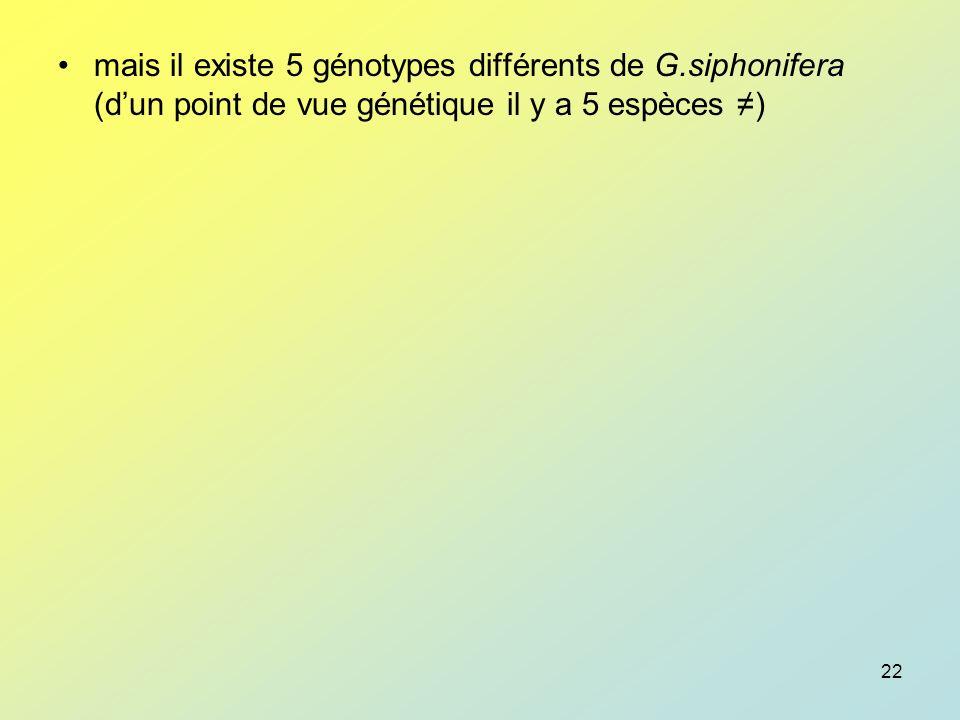 mais il existe 5 génotypes différents de G