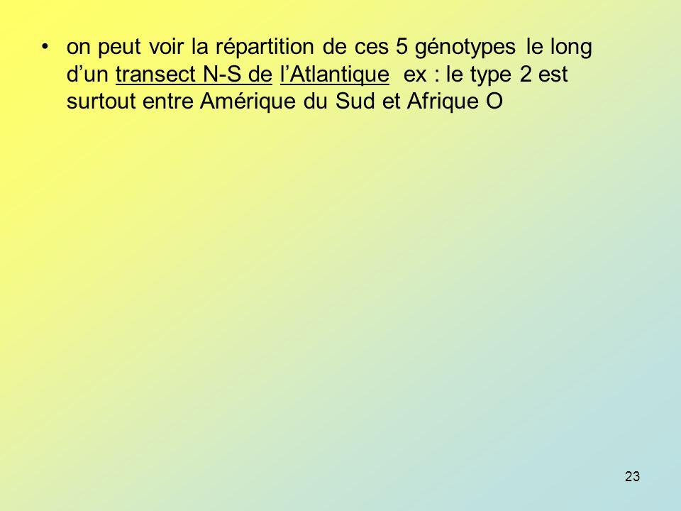 on peut voir la répartition de ces 5 génotypes le long d'un transect N-S de l'Atlantique ex : le type 2 est surtout entre Amérique du Sud et Afrique O