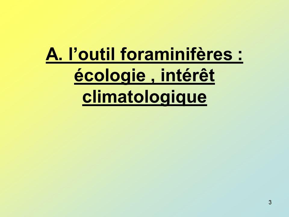 A. l'outil foraminifères : écologie , intérêt climatologique