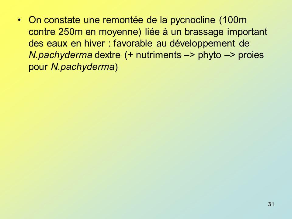 On constate une remontée de la pycnocline (100m contre 250m en moyenne) liée à un brassage important des eaux en hiver : favorable au développement de N.pachyderma dextre (+ nutriments –> phyto –> proies pour N.pachyderma)